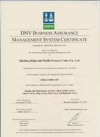 DNV OHSAS  Occupational Health and Safety Management